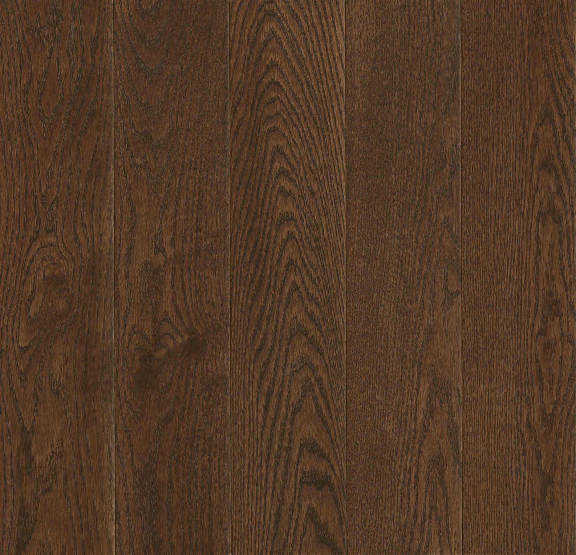 Cocoa Bean Northern Red Oak