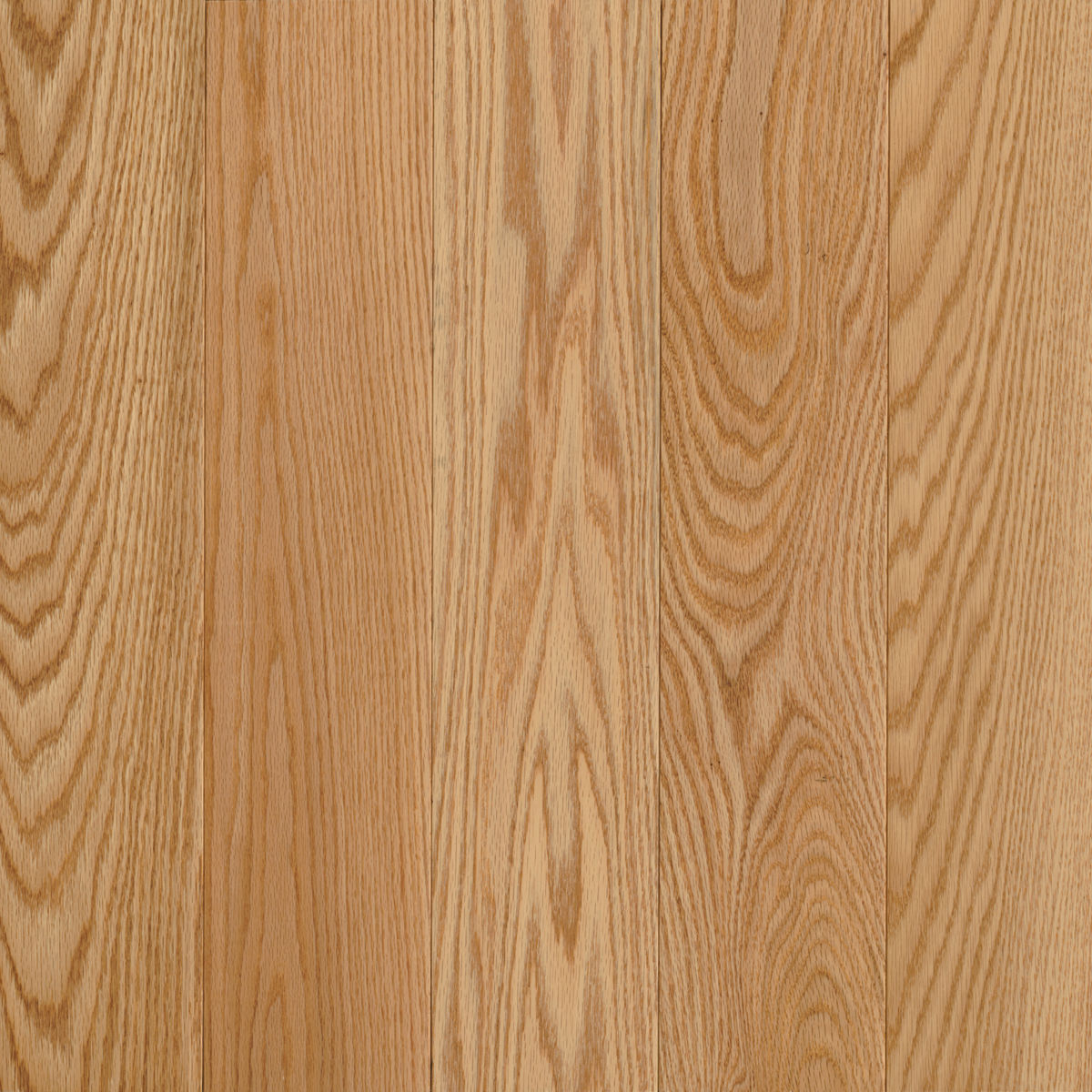 Northern Red Oak 3″