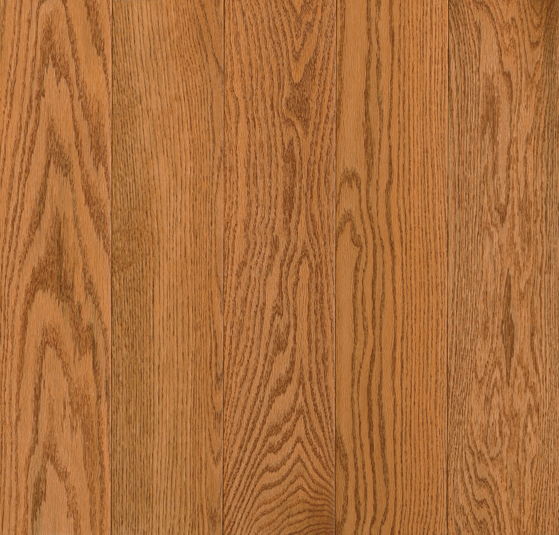 Northern Red Oak 5″