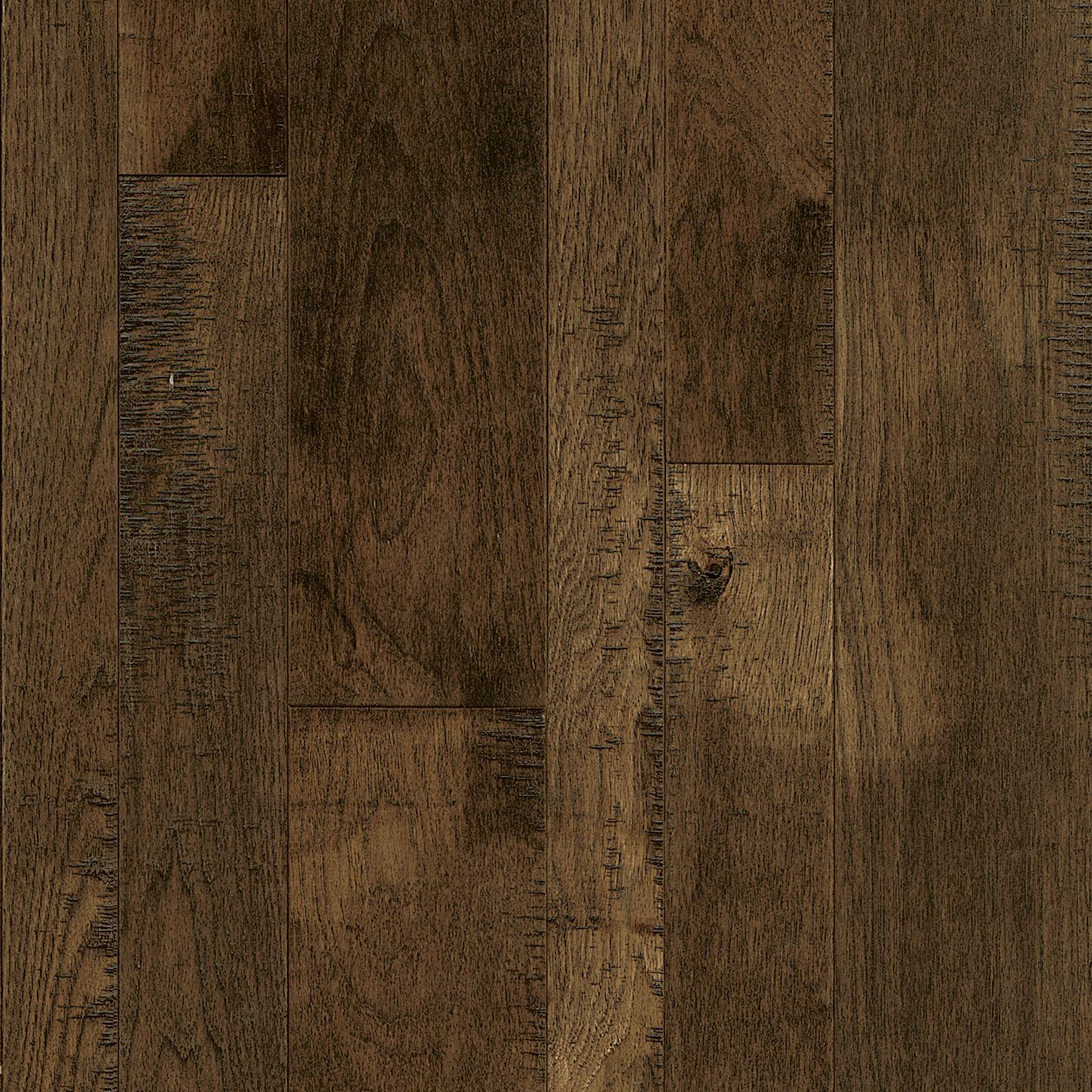 Bark Brown Hickory